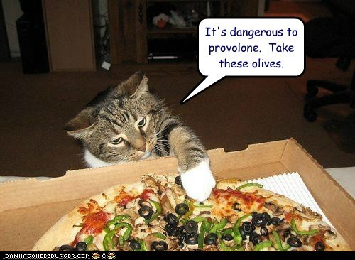 food,its dangerous to go alone,nom,olive,pizza,provolone,pun