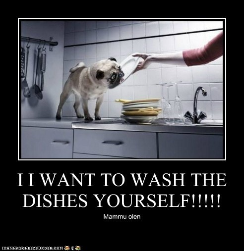 I I WANT TO WASH THE DISHES YOURSELF!!!!!