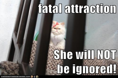 fatal attraction  She will NOT                    be ignored!