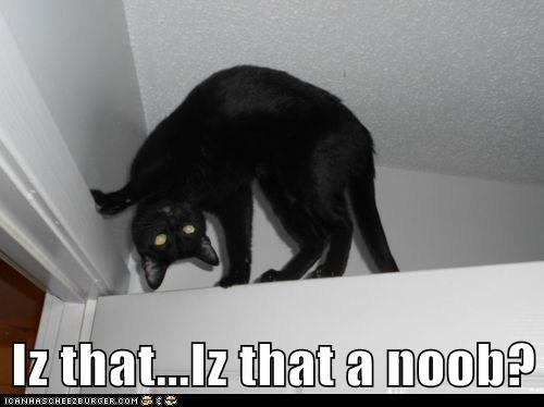 Iz that...Iz that a noob?