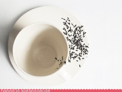 ants,bugs,cup,dishes,print,saucer