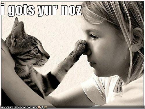 i gots yur noz