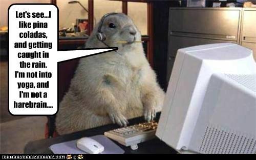 computer,eharmony,headphones,online dating,rabbit