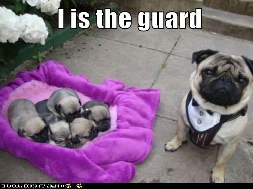 I is the guard