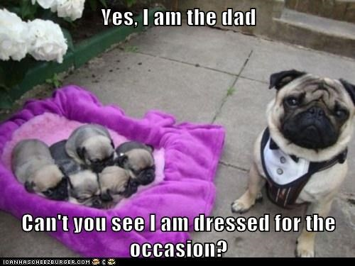 Yes, I am the dad  Can't you see I am dressed for the occasion?