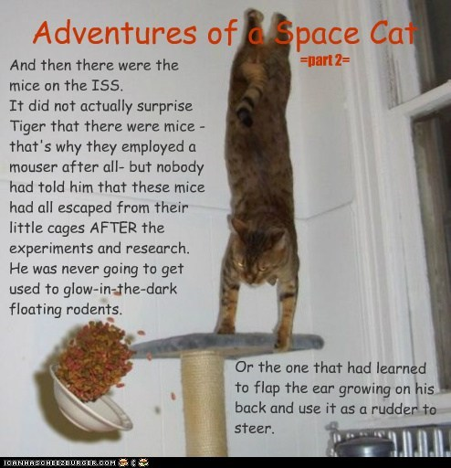 Adventures of a Space Cat =part2=