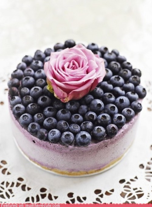 blueberries,cake,epicute,Flower,pretty,rose