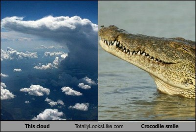 This Cloud Totally Looks Like Crocodile Smile
