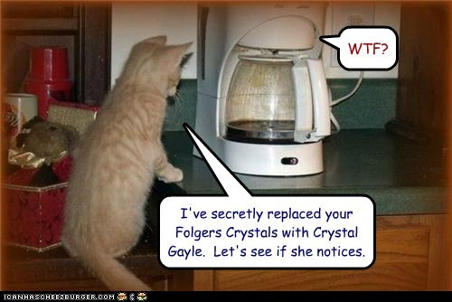 I've secretly replaced your Folgers Crystals with Crystal Gayle.  Let's see if she notices.