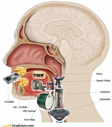anatomy,beatboxing,Music