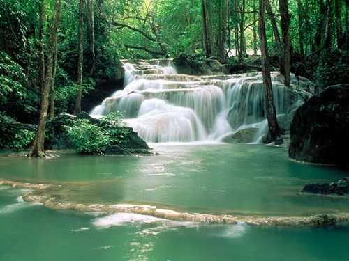China,Forest,river,waterfall