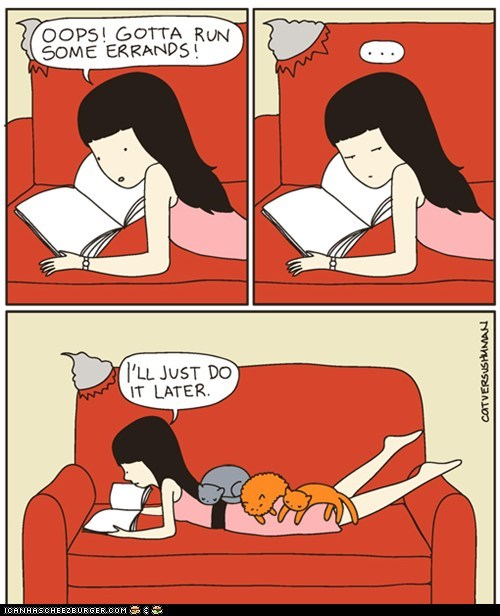 annoying,cat versus human,Cats,comic,comics,in the way,on top,procrastination