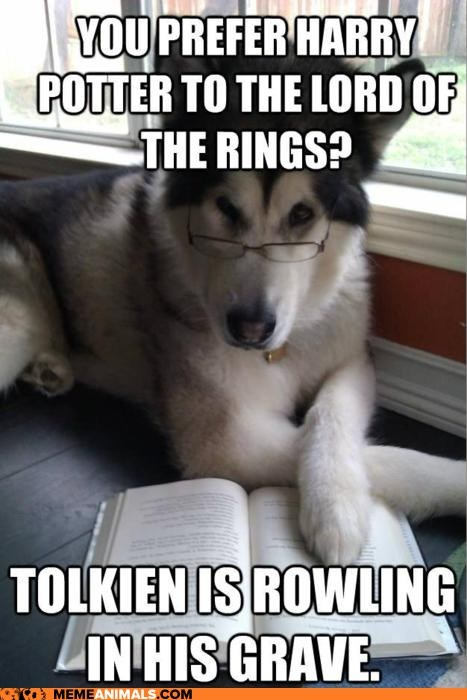 Animal Memes: Condescending Literary Pun Dog - You're Smoking Too Much Potter