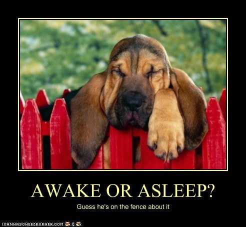 AWAKE OR ASLEEP?
