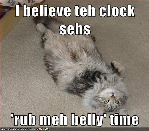 I believe teh clock sehs  'rub meh belly' time