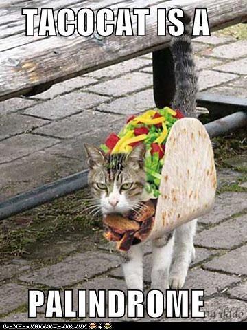 backwards,food,forwards,noms,palindrome,street,taco,walk