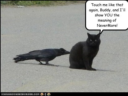 Touch me like that again, Buddy, and I'll show YOU the meaning of NeverMore!