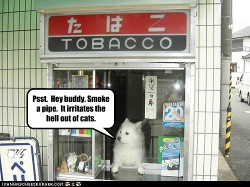 Psst.  Hey buddy. Smoke a pipe.  It irritates the hell out of cats.