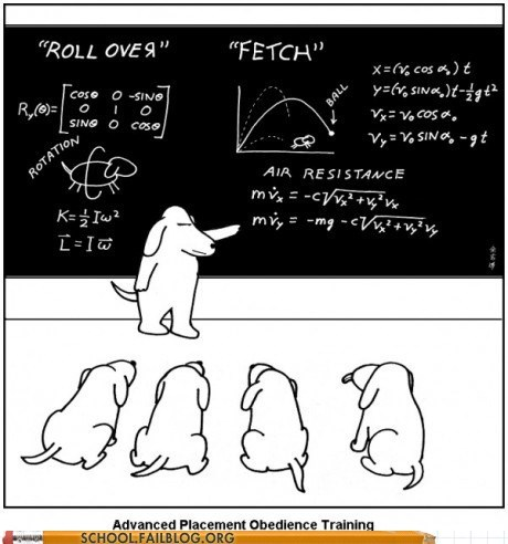 Physics and Animals 250: How Will They Learn If They Don't Know Why
