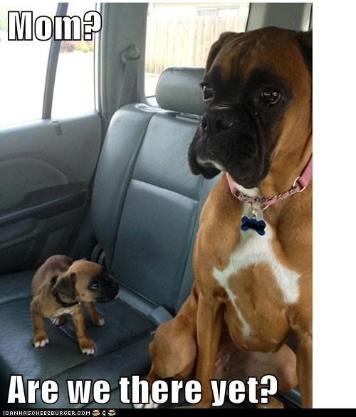 Mom?  Are we there yet?