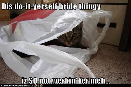Dis do-it-yerself bride thingy  iz SO not werkin' fer meh...
