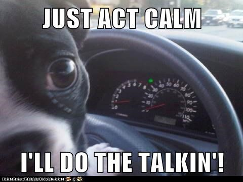 JUST ACT CALM  I'LL DO THE TALKIN'!
