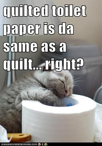 quilted toilet paper is da same as a quilt... right?