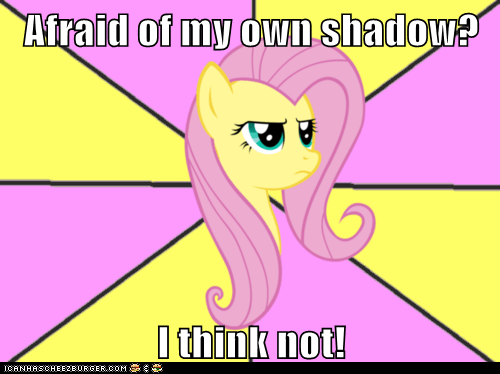 Afraid of my own shadow?  I think not!