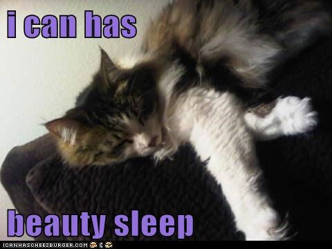 i can has  beauty sleep