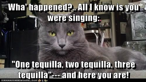 "Wha' happened?.. All I know is you were singing:  ""One tequilla, two tequilla, three tequilla""--- and here you are!"