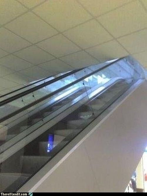 You Must Be THIS Short to Ride the Escalator
