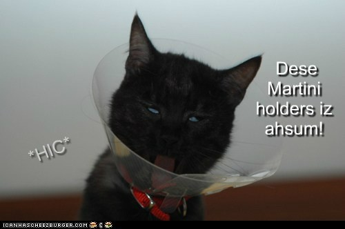 alcohol,best of the week,booze,cone,cone of shame,drunk,martini