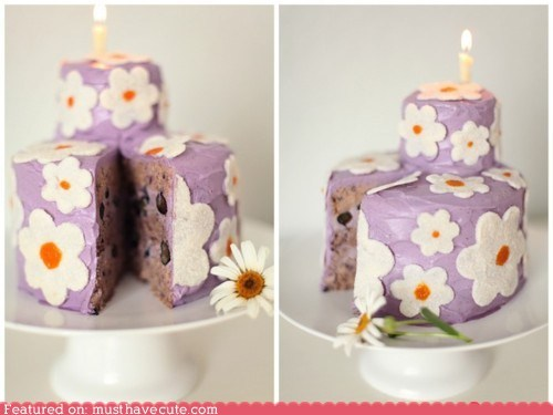 blueberries,cake,candle,epicute,flowers