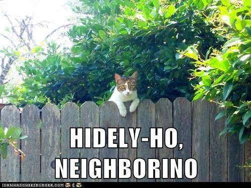 HIDELY-HO, NEIGHBORINO