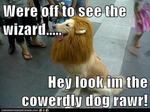 Were off to see the wizard.....  Hey look im the cowerdly dog rawr!