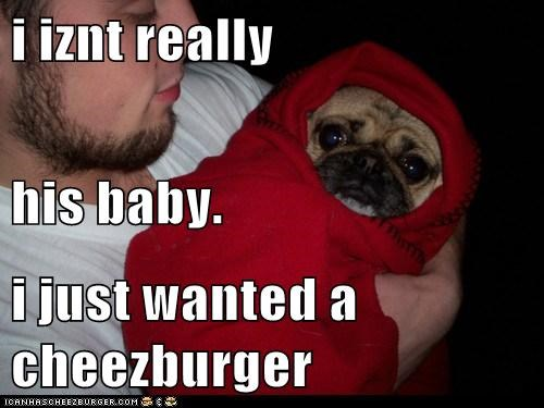 i iznt really his baby. i just wanted a cheezburger