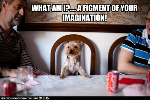 WHAT AM I?.... A FIGMENT OF YOUR IMAGINATION!