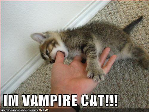 IM VAMPIRE CAT!!!