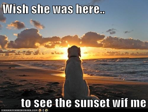 Wish she was here..  to see the sunset wif me