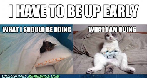 Cats,sleep,the internets,video games,whats-wrong-with-me,why-am-i-a-cat