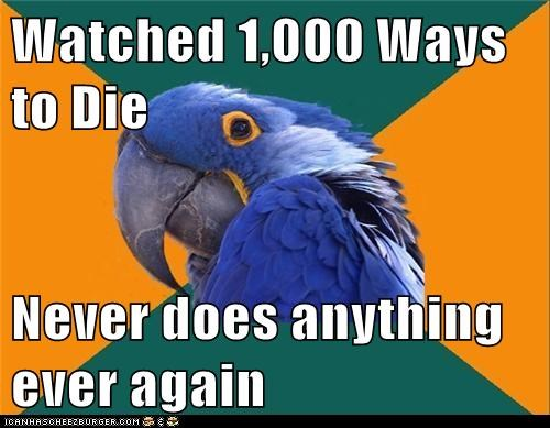 1000 ways to die,Death,dying,Memes,paranoid,Paranoid Parrot,parrots