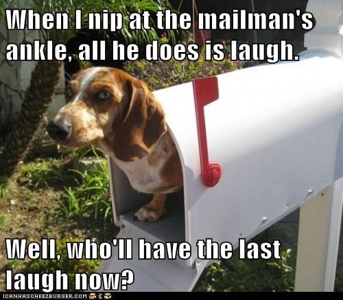 When I nip at the mailman's ankle, all he does is laugh.  Well, who'll have the last laugh now?
