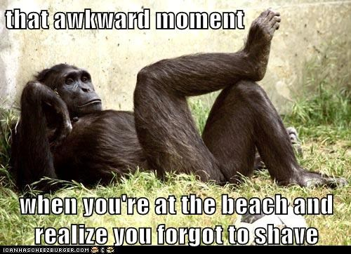that awkward moment  when you're at the beach and realize you forgot to shave