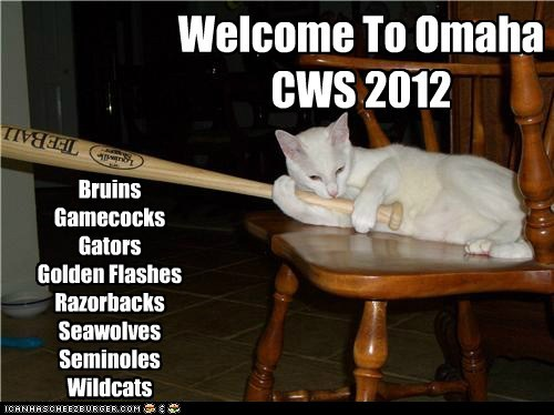 CWS 2012