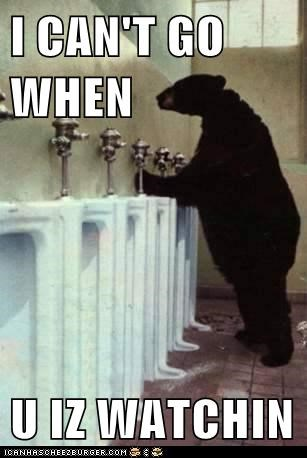 bear,cant-go,going to the bathroom,nervous,peeing,public restroom,watching