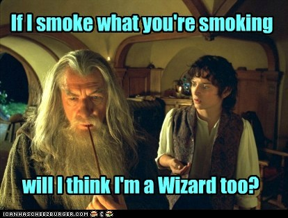 drugs,elijah wood,Frodo Baggins,gandalf,hallucinations,ian mckellan,Lord of The Ring,Lord of the Rings,smoking,wizard