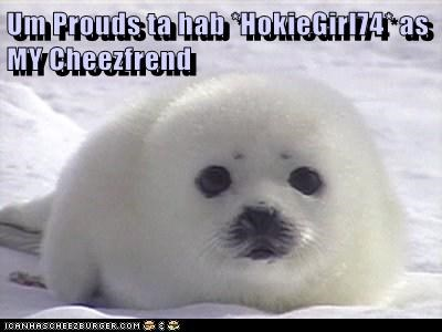 Um Prouds ta hab *HokieGirl74* as MY Cheezfrend