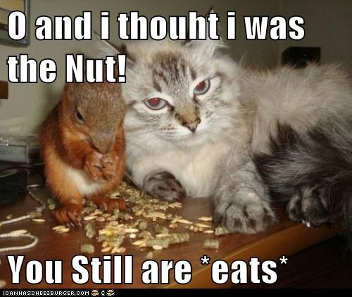 O and i thouht i was the Nut!  You Still are *eats*
