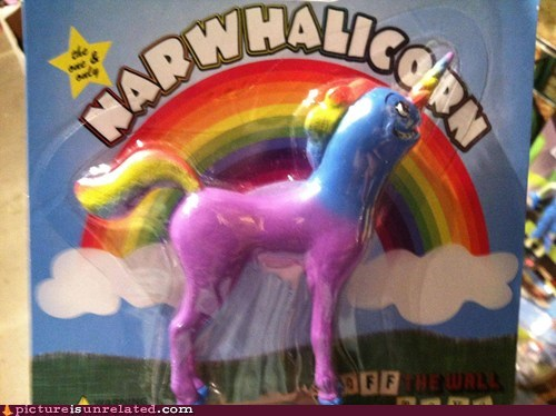 best of week,narwahl,toy,unicorn,wtf