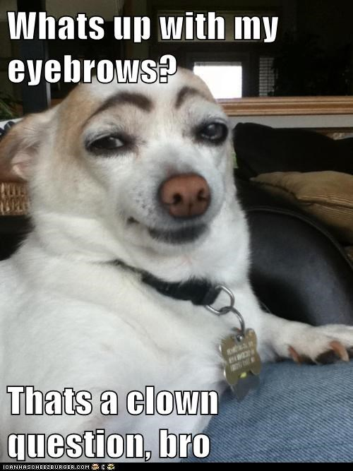 Whats up with my eyebrows?  Thats a clown question, bro